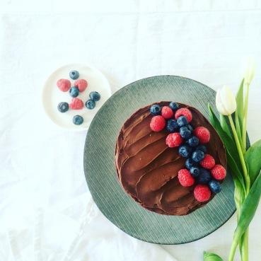 Chocolate ganache and berry cake