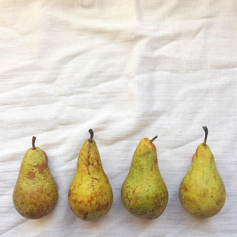 Pears - Sky Meadow Bakery blog
